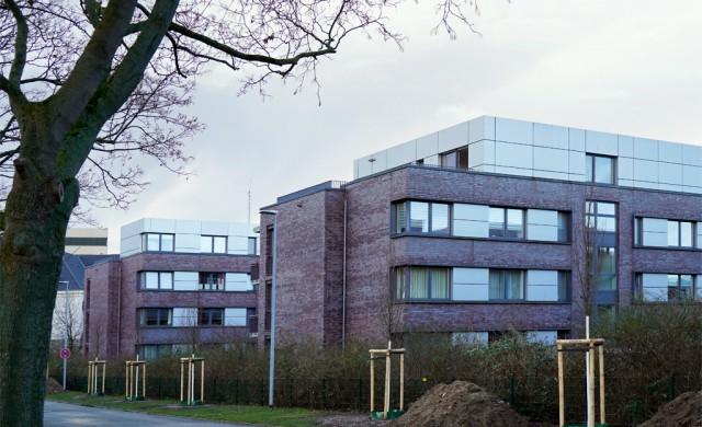 Neupflanzungen an der Tannenbergallee auf Antrag der Grünen